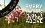 Every Good and Perfect Gift is From Above w Banner