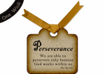 Perseverance w Banner